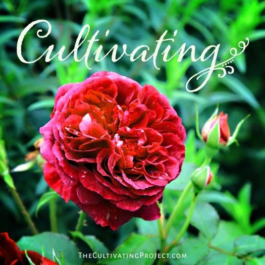 CultivatingPic1