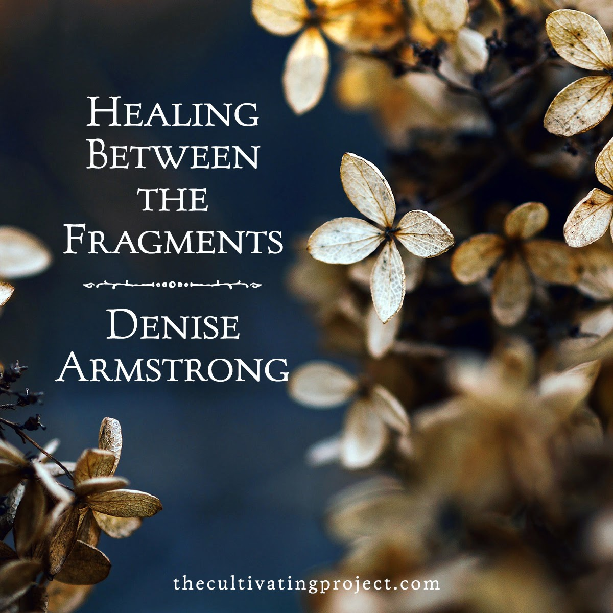 New on Cultivating—Healings Between the Fragments